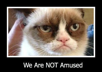grumpy_cat_is_not_amused.jpg