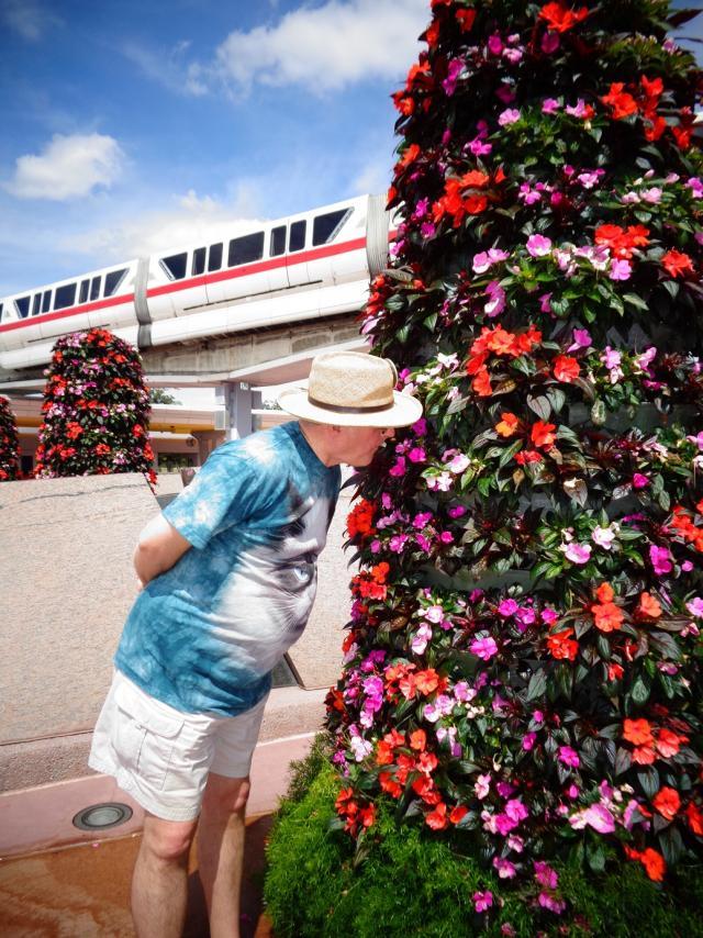 stopsmellflowers.jpg