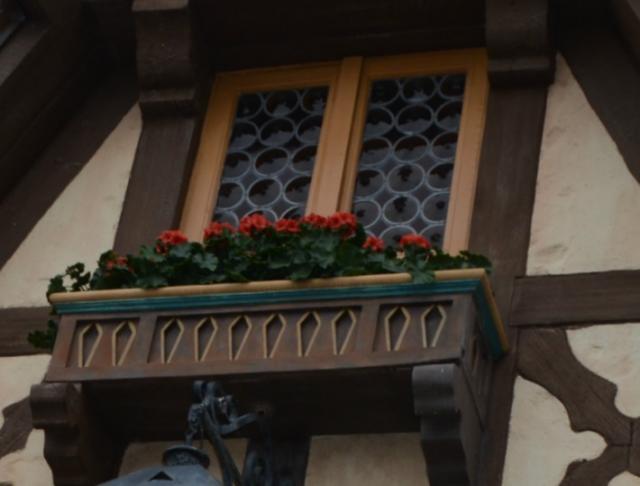 window-box.jpg
