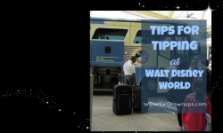 A Few Tips On Tipping at Walt Disney World