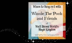 Where To Hang Out With Winnie The Pooh at Walt Disney World's Magic Kingdom