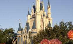 Guests Can Now Get Married in Front of Cinderella Castle at the Magic Kingdom