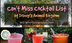 My Can't Miss Cocktail List At Disney's Animal Kingdom