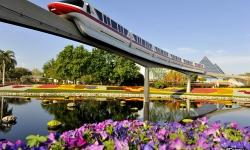 Florida Residents Can Enjoy Special Savings at the Walt Disney World Resort in Early 2014