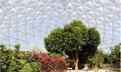 Explore Four Unique Greenhouse Environments On Epcot's Behind The Seeds Tour