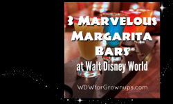 3 Marvelous Margarita Bars To Celebrate Cinco de Mayo at Walt Disney World