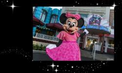 Minnie's Seasonal Dine Will Be Offered Year-Round at Hollywood & Vine in Disney's Hollywood Studios