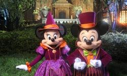 Dates Released for 2017 Mickey's Not-So-Scary Halloween Party and Mickey's Very Merry Christmas Party