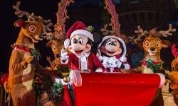 Mickey's Very Merry Christmas Party Details