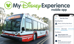 Bus Times Feature Now On The My Disney Experience App