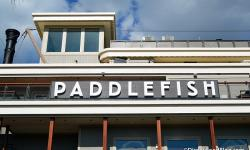Disney News Round-up: Paddlefish Opens at Disney Springs, Starring Rolls Closes at Disney's Hollywood Studios, and More