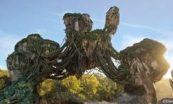 Disney News Round-Up: Learn to Speak Na'vi, New Photo Capture at Pirates of the Caribbean, and More