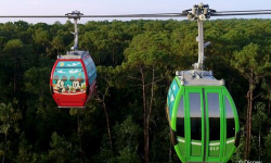 Disney Skyliner Gives Guests A New Perspective In Transportation