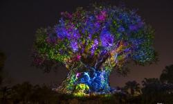 Memorial Day Weekend Brings Extended Hours and Nighttime Experiences to Disney's Animal Kingdom