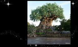 Tree of Life at Disney's Animal Kingdom Grows New Roots
